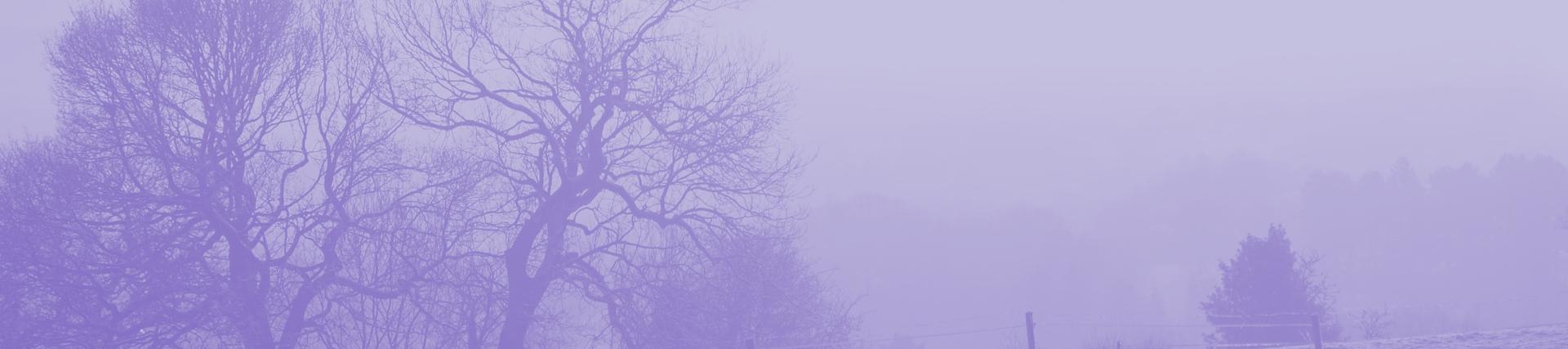 Image of a landscape under snow